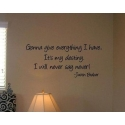"Justin Bieber ""Gonna Give Everything I Have"" Vinyl Wall Art"