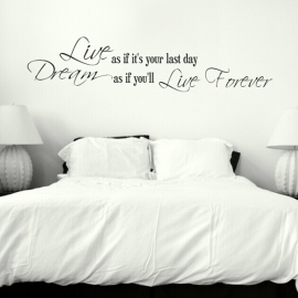 """Live as if it's your last day"" Vinyl Wall Art"