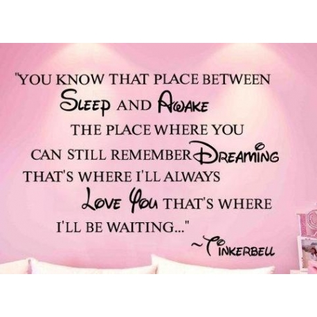 """Tinkerbell """"You know that place..."""" Vinyl Wall Art"""